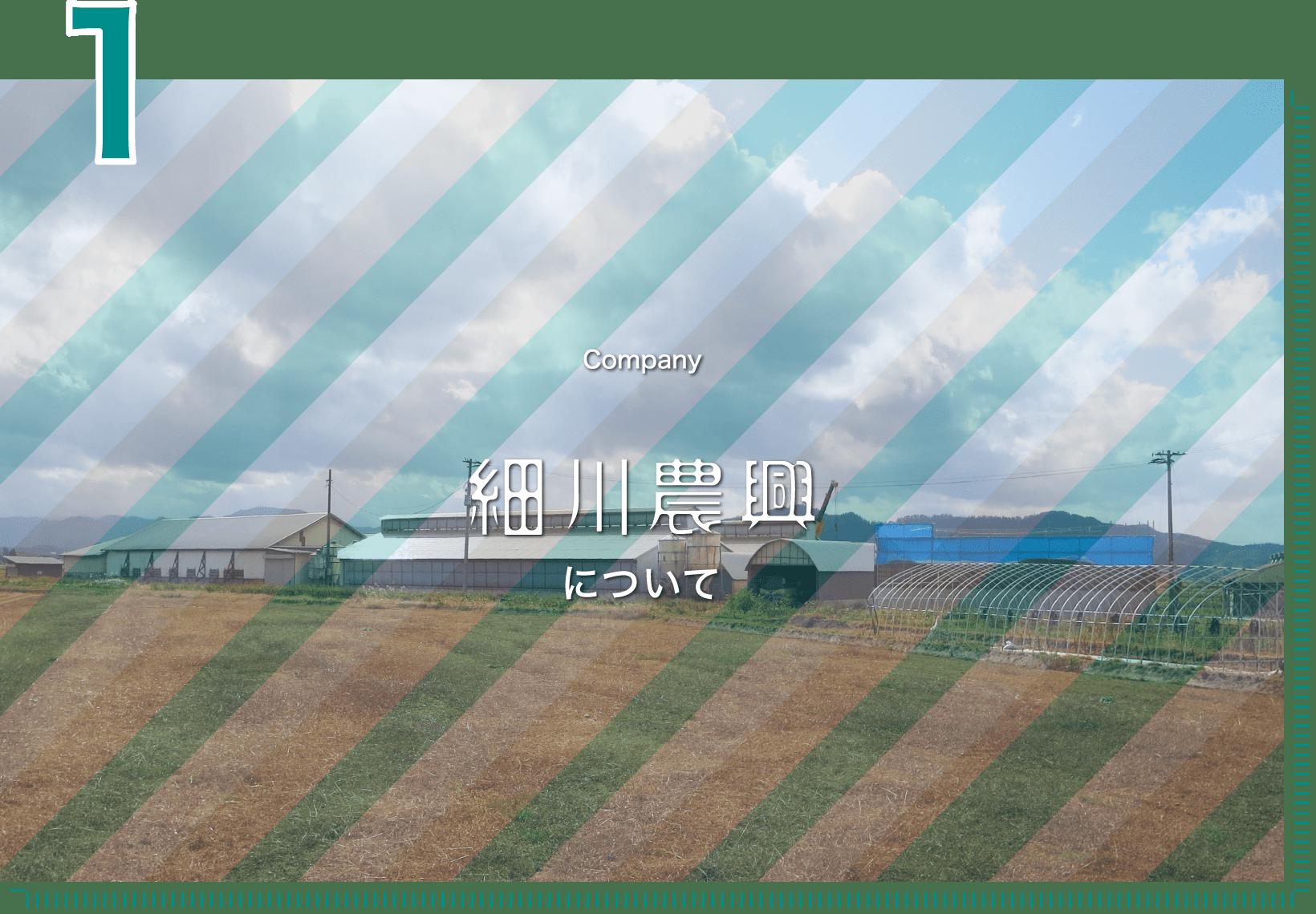 1 Company 細川農興について
