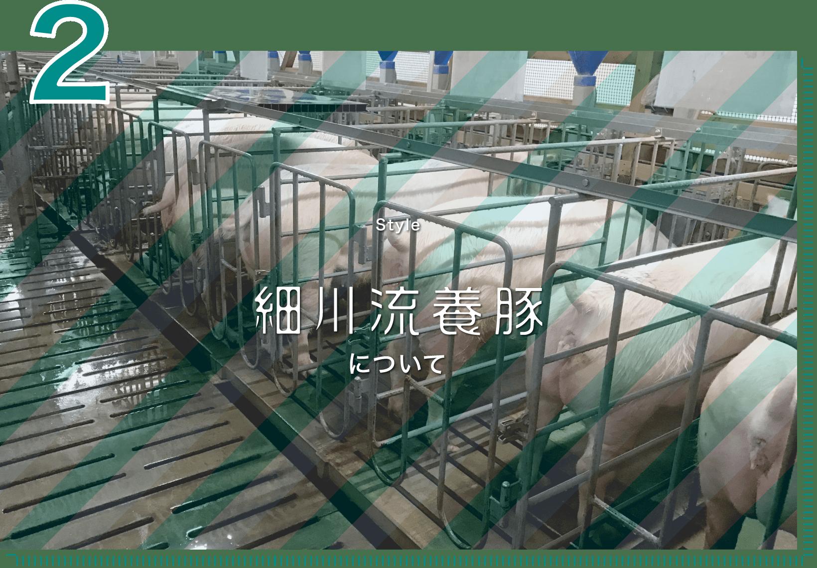 2 Style 細川流養豚について